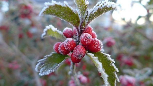 Погода в Казани с 5 по 6 ноября