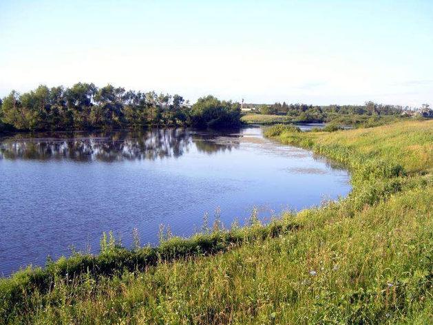 В Татарстане директора маслодельного завода оштрафовали за сброс стоков в реку