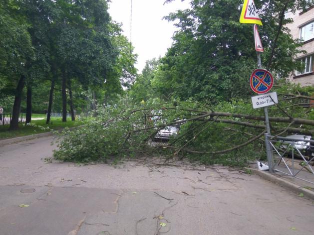 В Татарстане объявили штормовое предупреждение – ожидаются шквалы до 25 м/с