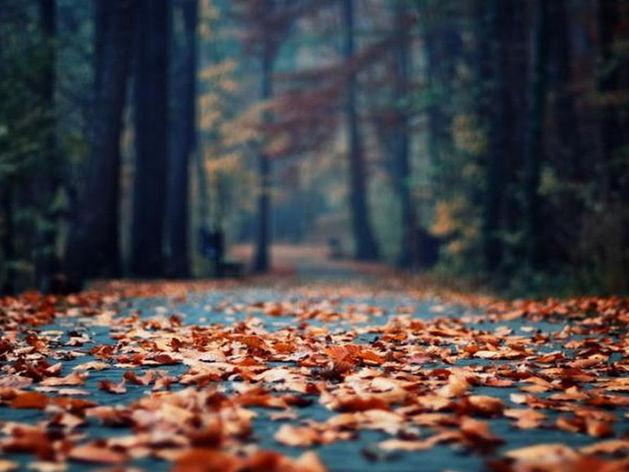Ноябрьские праздники для жителей Татарстана стали на день короче