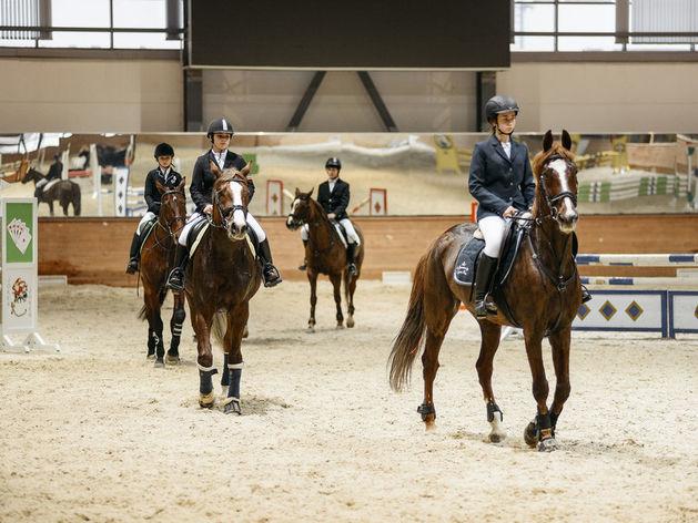 В Татарстане впервые прошли студенческие игры по конному спорту